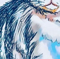 猫の絵の体の部分のアップ