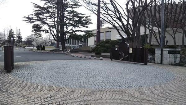 きれいな桜が見られるおススメお花見スポット!【福島県郡山市 - 開成山公園】