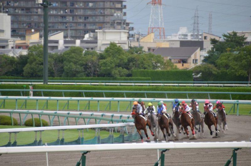 名曲が多いJRAのCMソング!美しい競走馬の映像と一緒に見るとさらに感動的【邦楽】
